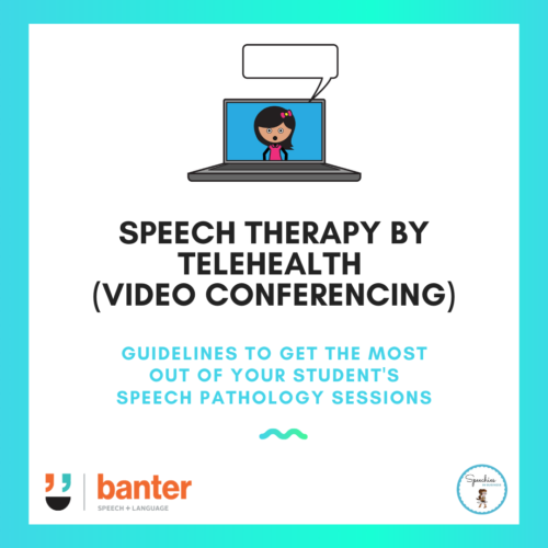 speech therapy by telehealth (video conferencing)